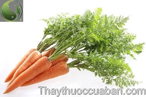 Hình ảnh cây cà rốt, vị thuốc cà rốt