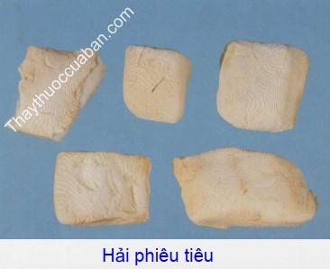 Hình ảnh vị thuốc hải phiêu tiêu