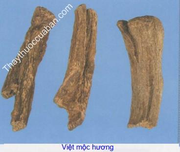 Hình ảnh Việt mộc hương