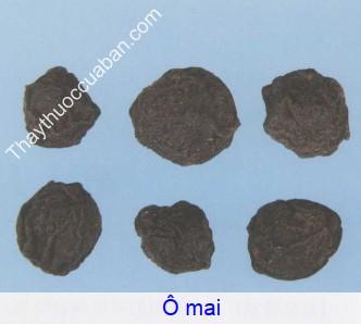 Hình ảnh vị thuốc Ô mai