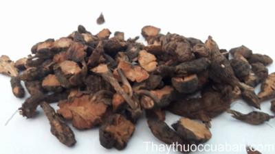 Hình ảnh vị thuốc hương phụ