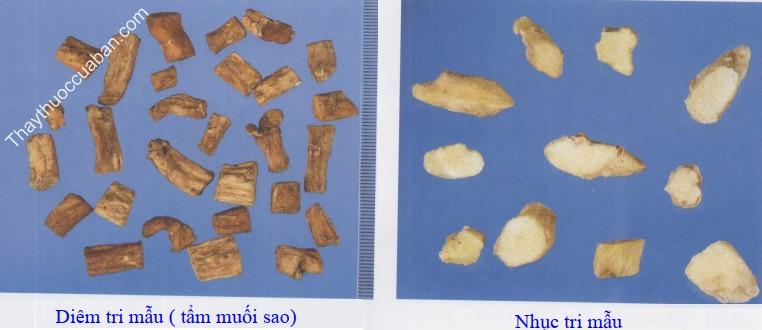 Hình ảnh vị thuốc tri mẫu sao